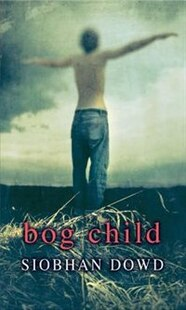 Rollercoasters: Bog Child Reader