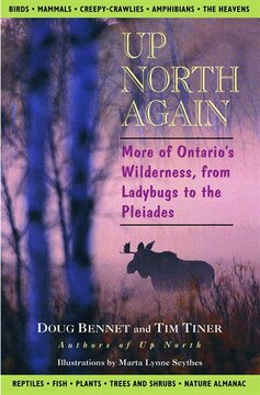 Up North Again: More Of Ontario's Wilderness, From Ladybugs To The Pleiades