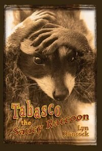 Tabasco the Saucy Racoon