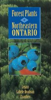 Forest Plants of Northeastern Ontario