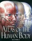 Illu Atlas Of The Human Body