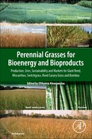 Perennial Grasses For Bioenergy And Bioproducts: Production- Uses- Sustainability And Markets For Giant Reed- Miscanthus- Switchgr