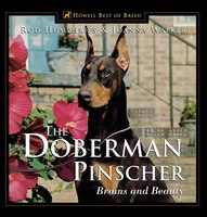 The Doberman Pinscher: Brains and Beauty