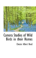 Camera Studies Of Wild Birds In Their Homes