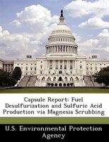 Capsule Report: Fuel Desulfurization And Sulfuric Acid Production Via Magnesia Scrubbing
