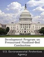 Development Program On Pressurized Fluidized-bed Combustion