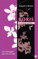 Boris e sua Mensagem Maravilhosa: Uma mensagem que voce vai amar - Samuel A. Britvin
