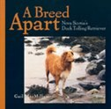 A Breed Apart: Nova Scotia Duck Tolling Retriever