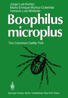 Boophilus microplus: The Common Cattle Tick