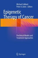 Epigenetic Therapy Of Cancer: Preclinical Models And Treatment Approaches