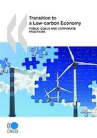 Transition To A Low-carbon Economy: Public Goals And Corporate Practices