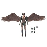 DC's Legends of Tomorrow: Hawkgirl - Action Figure by No Brand