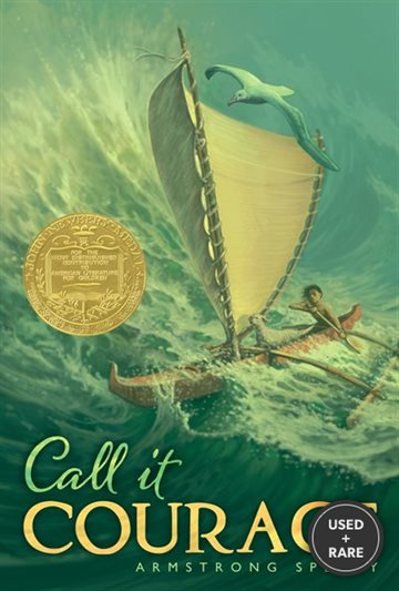 Call It Courage (Aladdin Books)