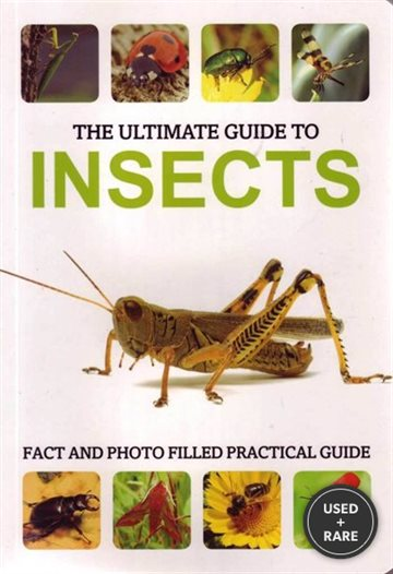The Ultimate Guide to Insects