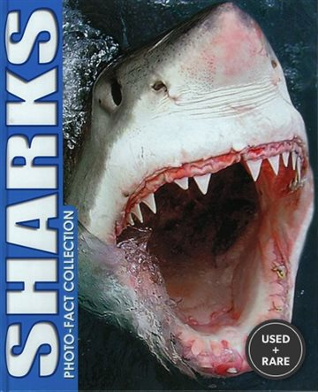 Sharks Photo Fact Collection