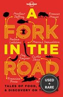 A Fork in the Road (Lonely Planet Travel Literature)