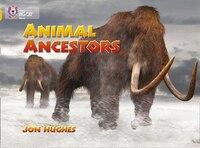 Animal_Ancestors_Band_09gold_collins_Big_Cat