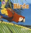 Birds:_Band_04_blue_(collins_Big_Cat_Phonics)