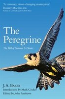 The_Peregrine