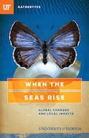When The Seas Rise: Global Changes And Local Impacts