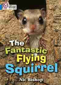 The Fantastic Flying Squirrel: Band 04/blue (collins Big Cat) by Nic Bishop