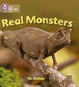 Real Monsters: Band 03/yellow (collins Big Cat Phonics) by Nic Bishop