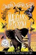 The Magicians Of Caprona (the Chrestomanci Series, Book 2) by Diana Wynne Jones