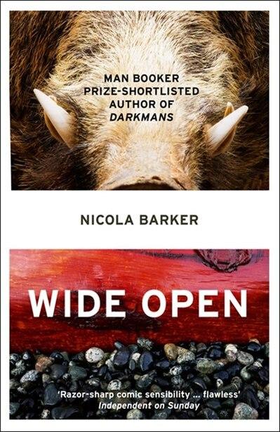 Wide Open by NICOLA BARKER