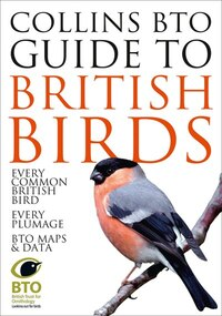 BTO Guide To The Common Birds Of Britain