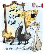 Monster In The Mirror: Level 14 (collins Big Cat Arabic Readers)