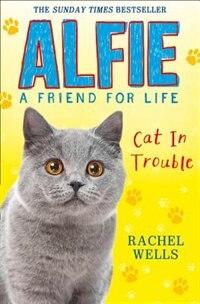 Book Alfie Cat In Trouble by Rachel Wells