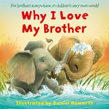 Why I Love My Brother Book By Daniel Howarth Board Book