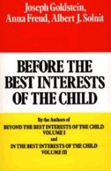 Book Before the Best Interests of the Child by Joseph Goldstein