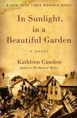 Book In Sunlight, In A Beautiful Garden: A Novel by Kathleen Cambor