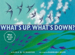 Book What's Up, What's Down? by Lola M. Schaefer