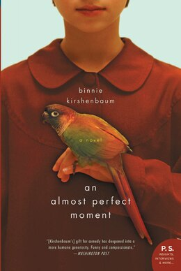 Book Almost Perfect Moment, An: A Novel by Binnie Kirshenbaum