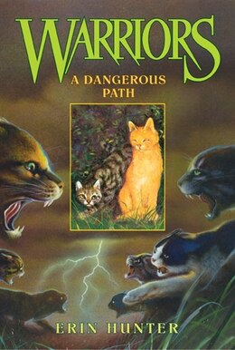 Book Warriors #5 A Dangerous Path by Erin Hunter
