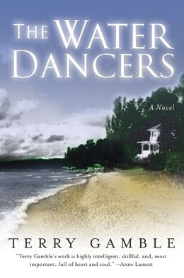 Book The Water Dancers: A Novel by Terry Gamble