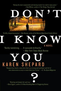 Book Don't I Know You?: A Novel by Karen Shepard