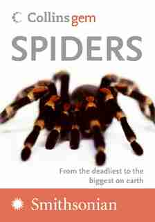 Spiders by Paul Hillyard