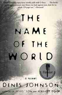 The Name Of The World: A Novel by Denis Johnson