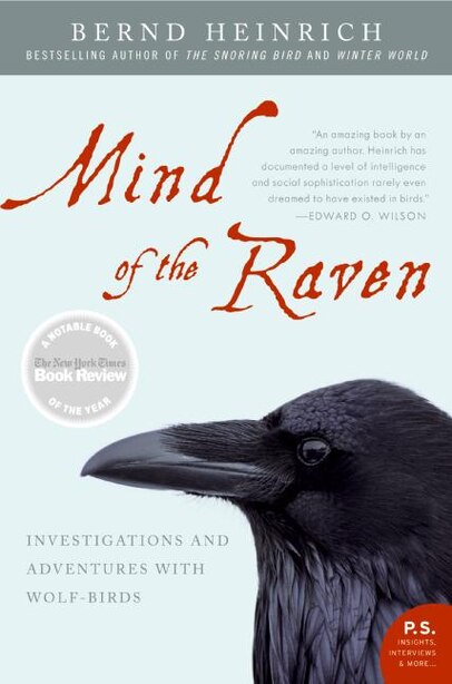 Mind Of The Raven: Investigations and Adventures with Wolf-Birds by Bernd Heinrich