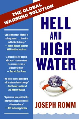 Book Hell And High Water: The Global Warming Solution by Joe Romm