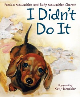Book I Didn't Do It by Patricia Maclachlan