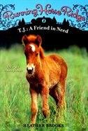 Running Horse Ridge #3: T.J.: A Friend in Need