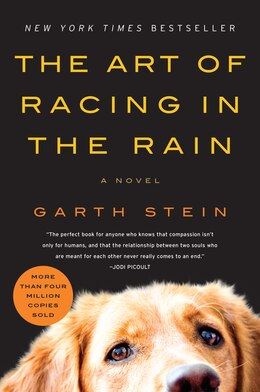 Book The Art of Racing in the Rain: A Novel by Garth Stein