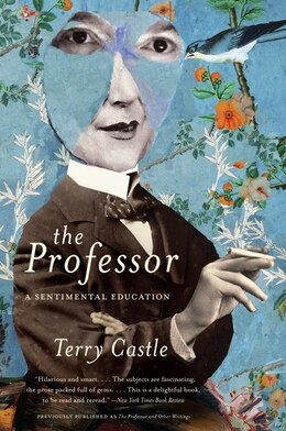 Book The Professor: A Sentimental Education by Terry Castle