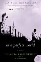 In A Perfect World: A Novel