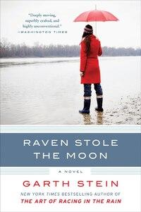 Raven Stole The Moon: A Novel