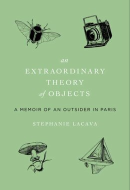 Book An Extraordinary Theory Of Objects: A Memoir of an Outsider in Paris by Stephanie LaCava